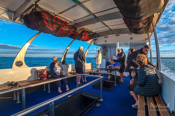 hervey-bay-glass-bottom-boat-tours