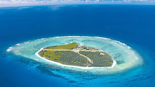 lady-elliot-island-tours.jpg