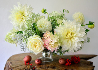 I am smitten with Dahlias..!