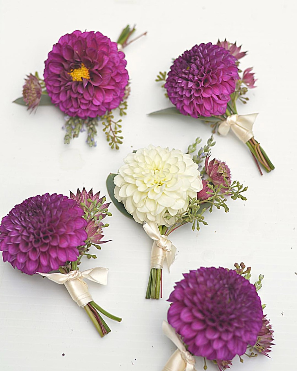 Small Pompon Dahlia boutonnieres with Astrantias, Lavenders, and seeded Eucalyptus