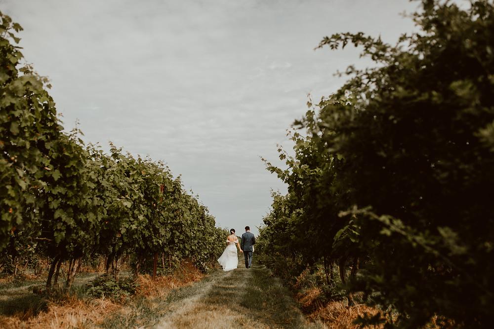 Colorful summer wedding at Saltwater Farm Vineyard