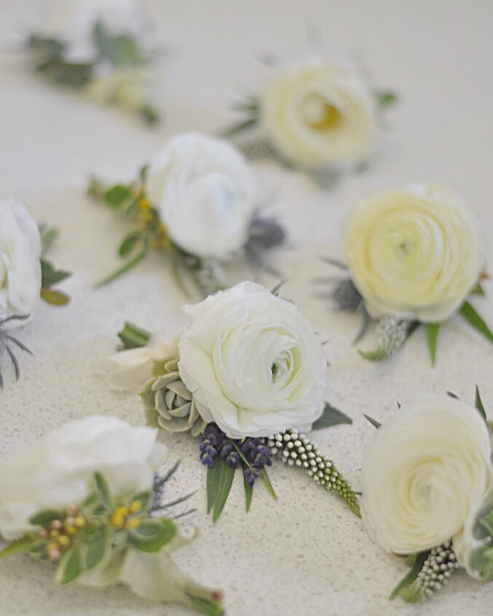 White Ranunculus boutonnieres with white Lysimachias, Lavenders, dusty blue Thistles, Eucalyptus, and small Succulent