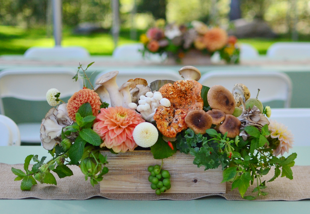 Farm to Table Dinner Centerpieces with Mushrooms at Chatfield Hollow B&B