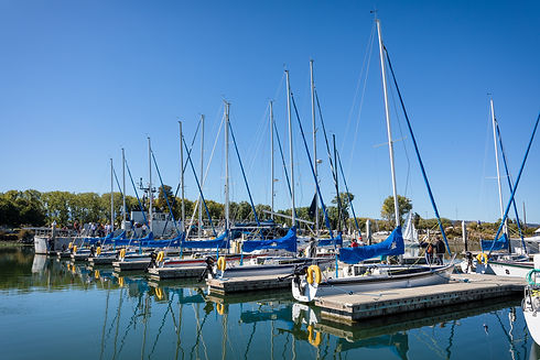 Boats Docked on the Port