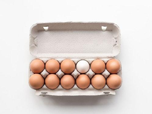 1 Dozen Eggs
