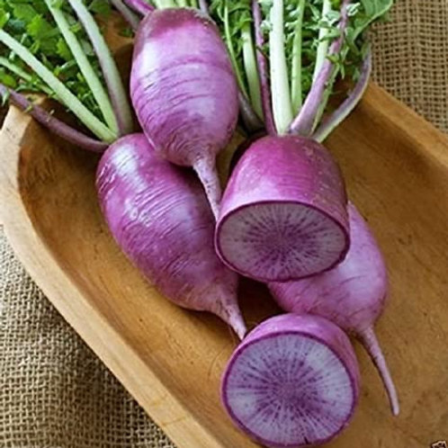 Purple daikon Bunch