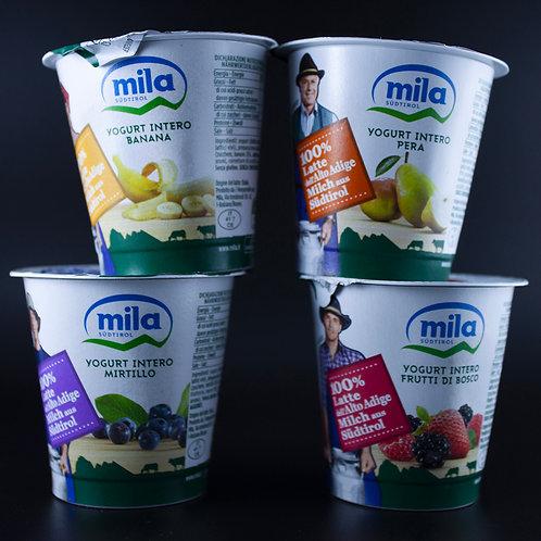 Yogurt Mila 125g