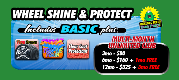 Wheel Shine - Protect package.png