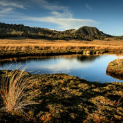 Mountain Tarn  High up in Kahurangi National park sits the Thousand Acre Plateau, a vast table-top of peat bags, tussock and tarns
