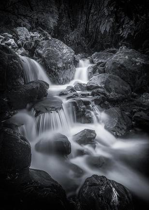 Kelly's Creek