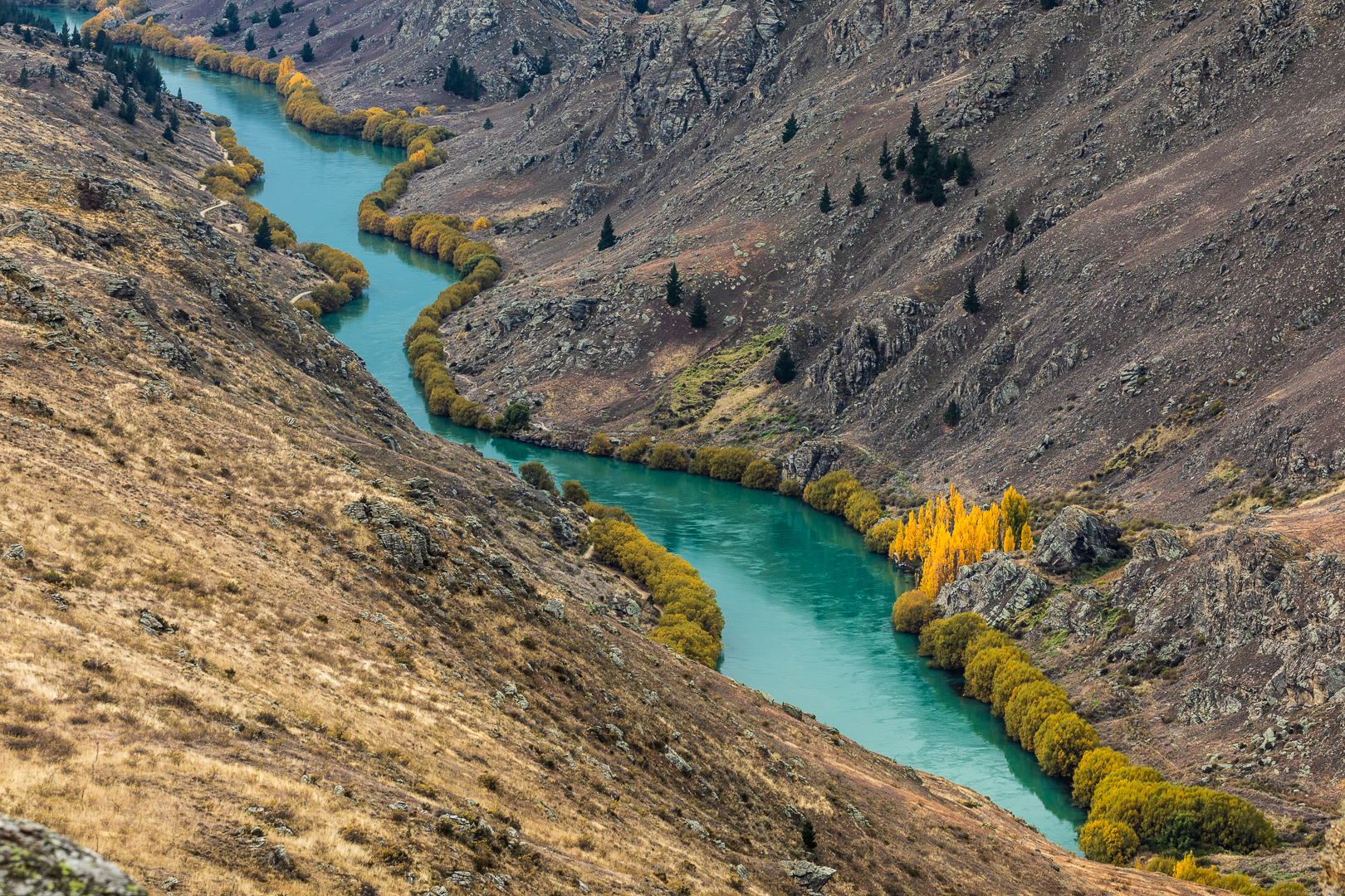 The Clutha River