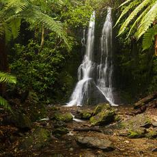 Elvy Stream Falls