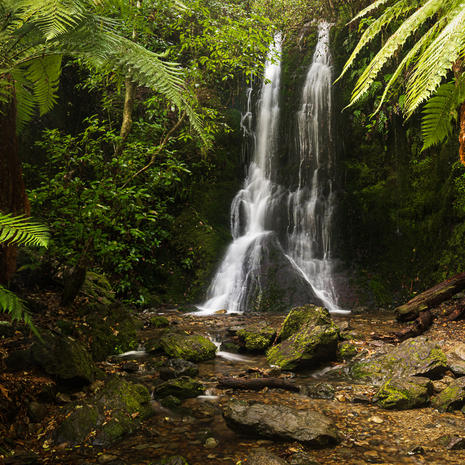 Elvy Stream Falls    Due to the complexities of the New Zealand Department of Conservation concession laws, this image is currently unavailable for purchase. Feel free to get in touch with your local MP to help remedy this!