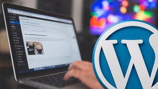 5 tipos de websites en Wordpress