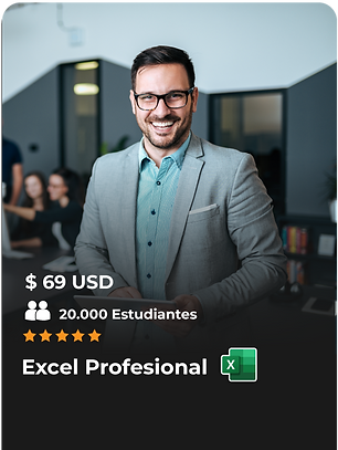 EXCEL-PROFESIONAL.png