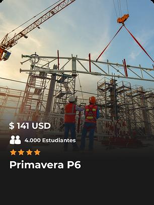 PRIMAVERA-P6.png