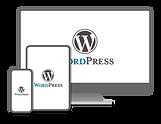 digitus-diseno-desarrollo-wordpress-cast