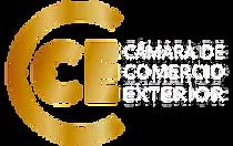 logo-cce2020-para-web.webp