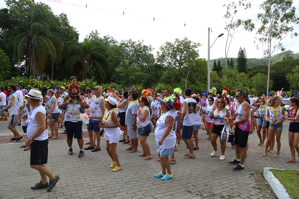 desfile carnaval (30)