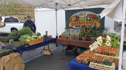 Early spring market booth