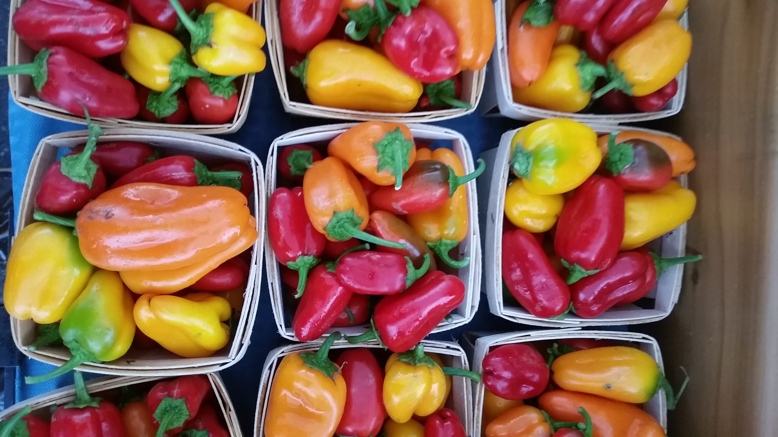 Lunch box sweet peppers at market