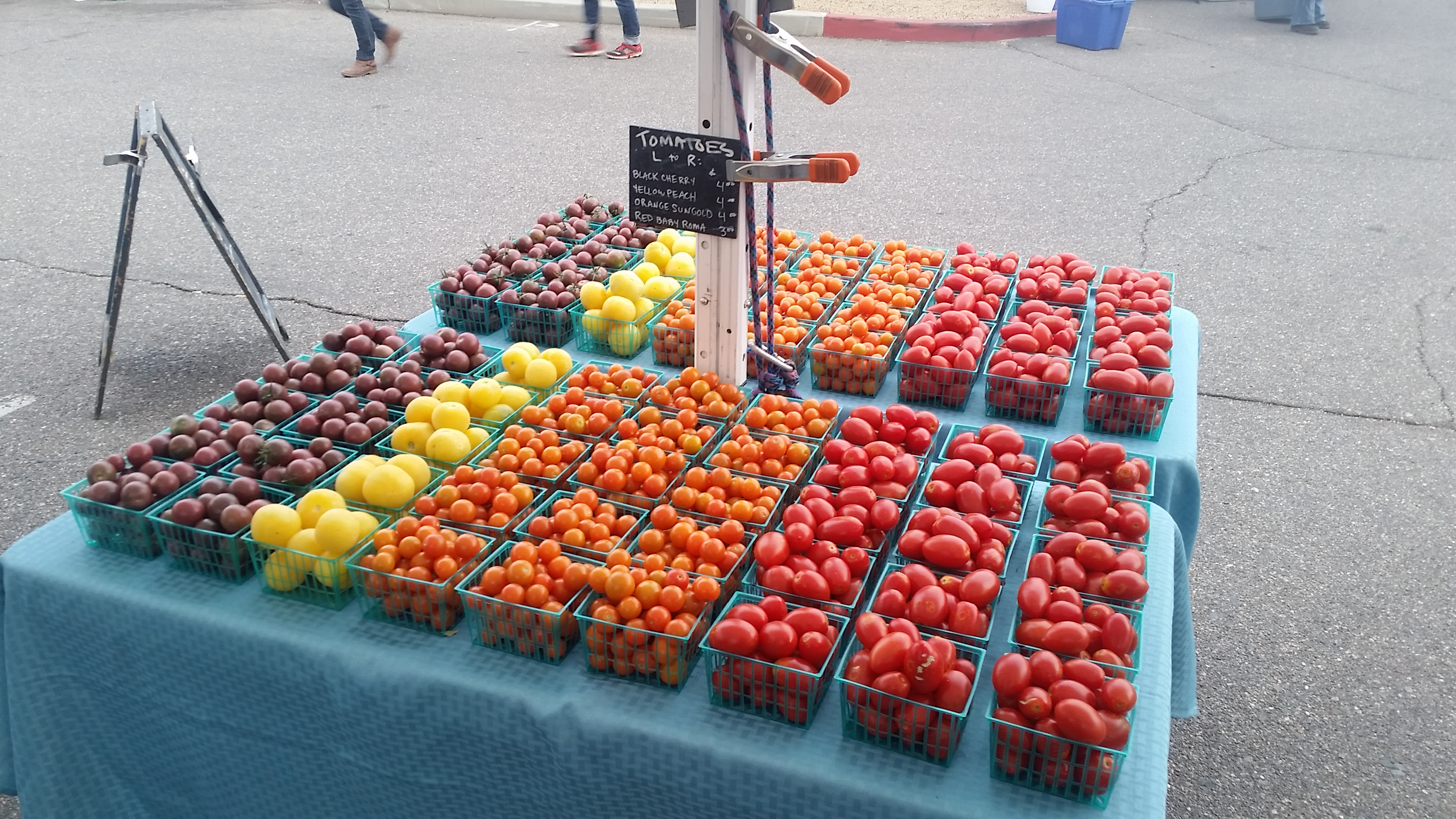 Rainbow tomato display