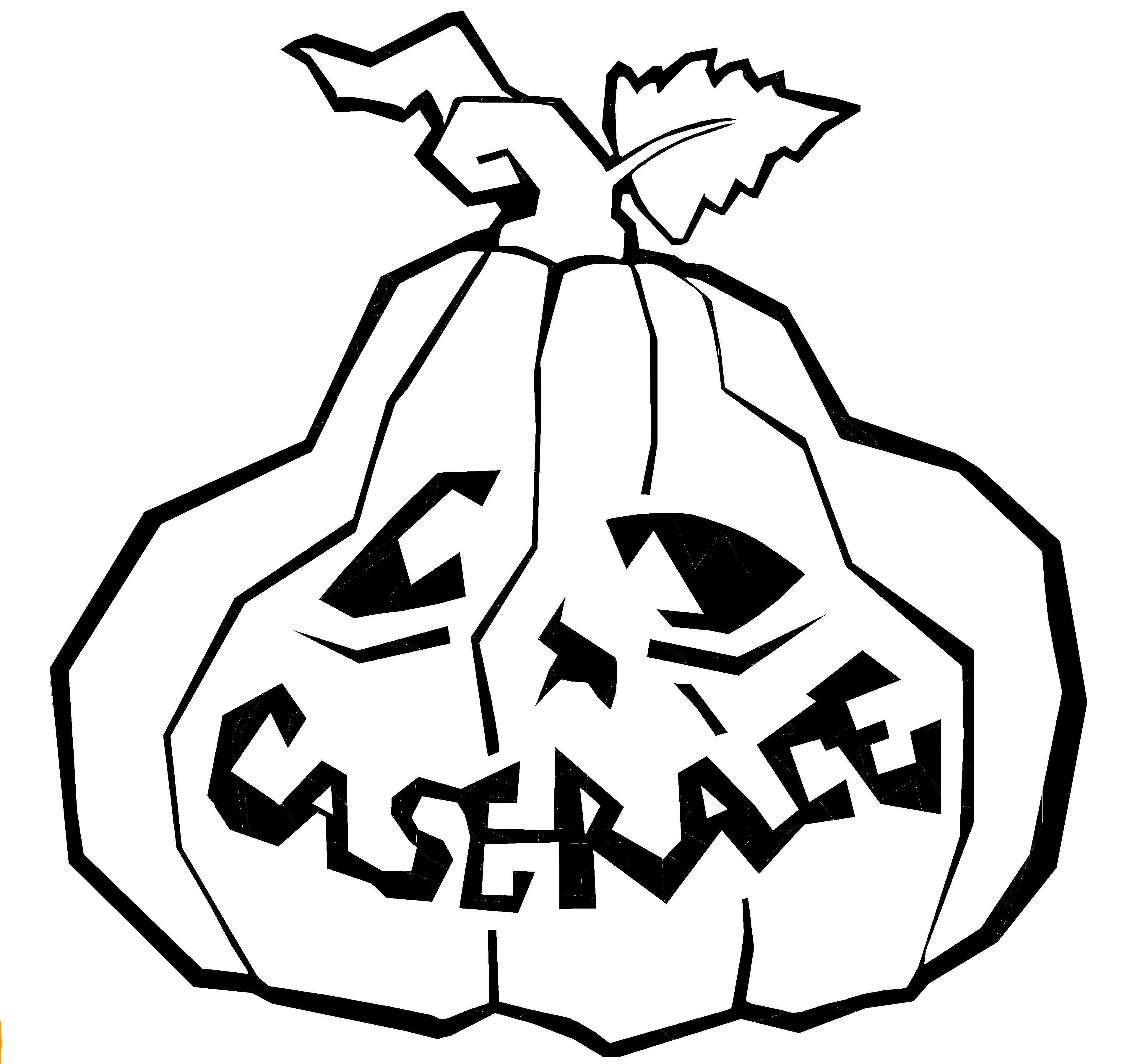 Case Rase Drunkin Pumpkin Black line.jpg