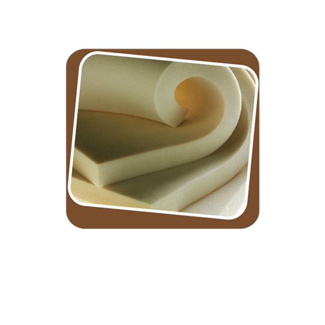 Micro Soft