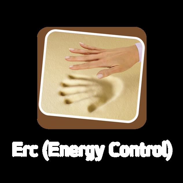 ERC Energy Control