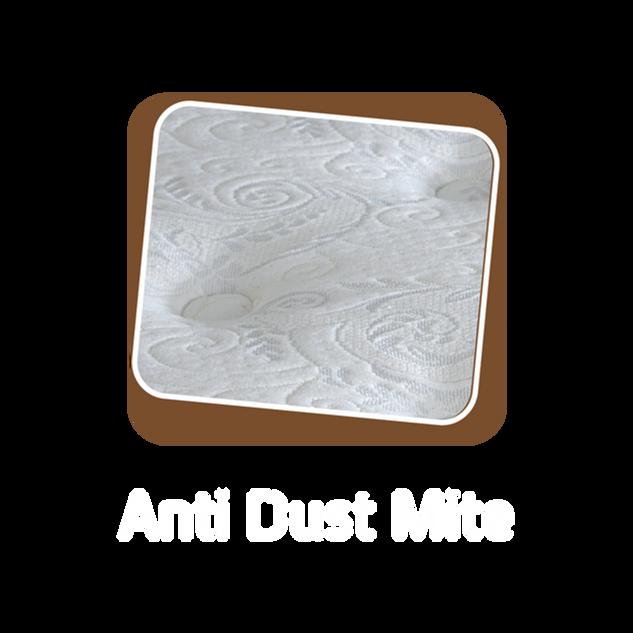 Anti Dust Mite