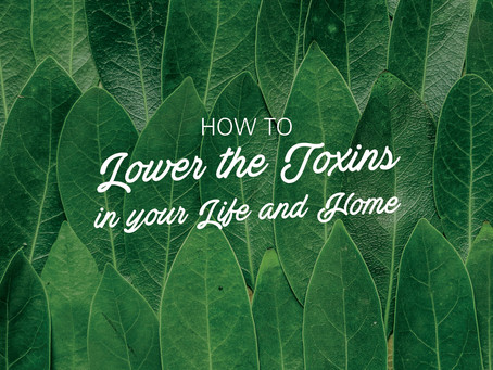 5 Easy Ways to Lower the Toxins in your Life and Home