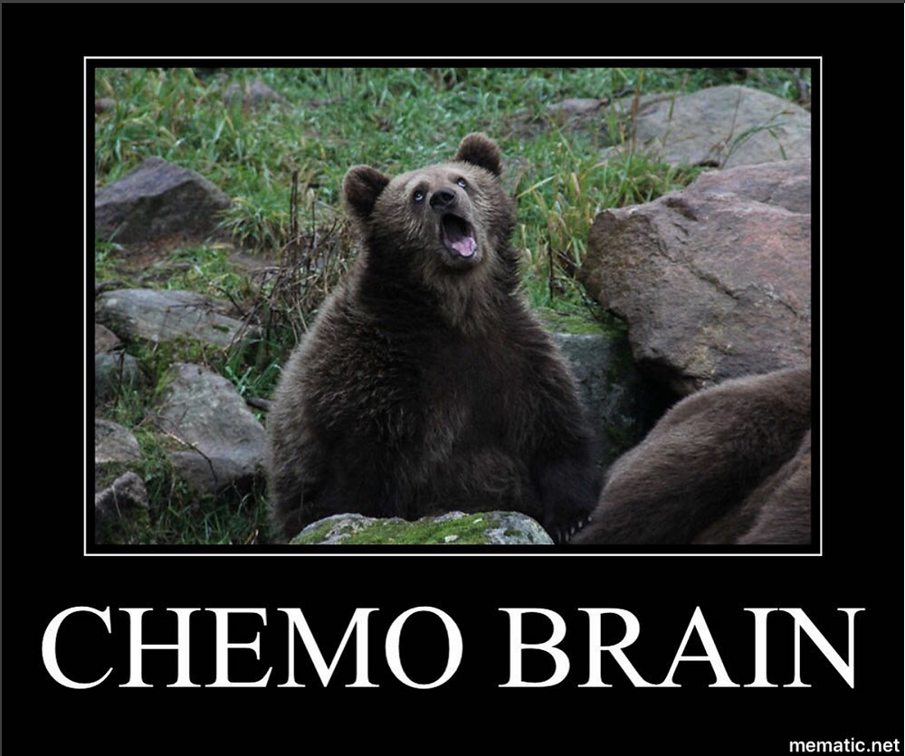Chemo Brain bear