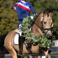 Steendieks Champ of Glory v. FS Chambertin