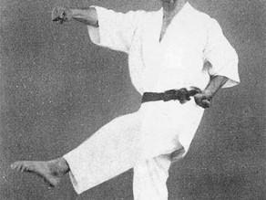 Karate-Do - die Lehren der Meister