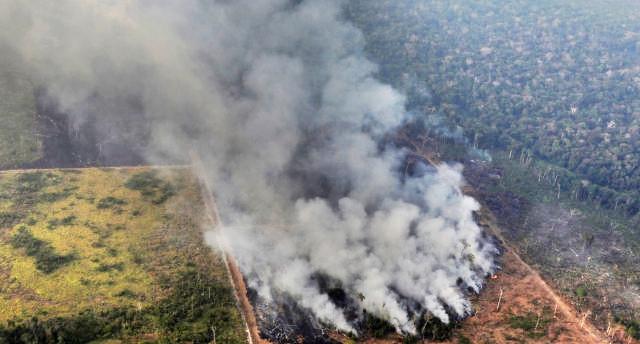 Após um mês negando o problema, Bolsonaro toma atitude contra o desmatamento e as queimadas na Amazônia