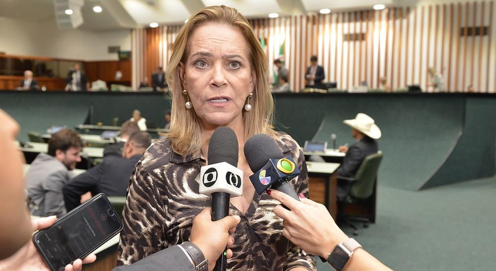 Lêda Borges propõe transparência em registros da Segurança Pública de Goiás