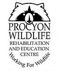 procyon logo.jpg