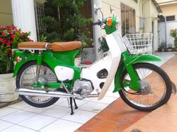 green cub.jpg