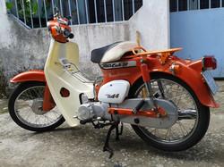 orange cub.jpg