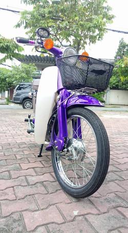 purple cub