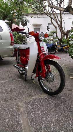 red cub 1966