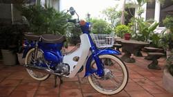 blue cub 4