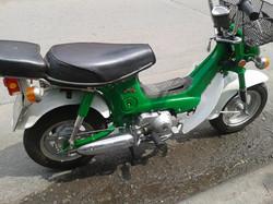 green chally 1.jpg