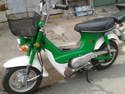 green chally.jpg