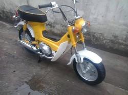 yellow chally 2.jpg