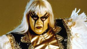 Episode 13 WWEs Goldust