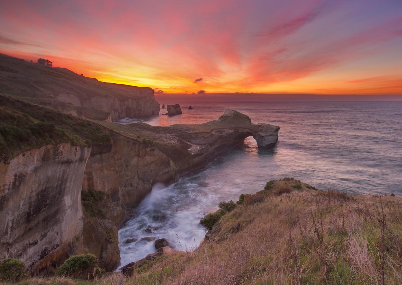 Brendon Gilchrist | Dunedin