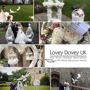 Dove Release By Lovey Dovey UK Cardiff Newport South wales