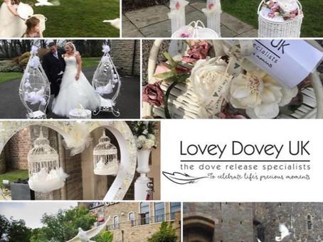 A Little Bit About Lovey Dovey UK
