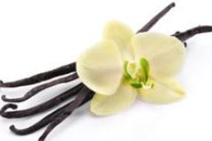 Vanilla Fragrance/Body Oil (Premium Quality) 10 ML